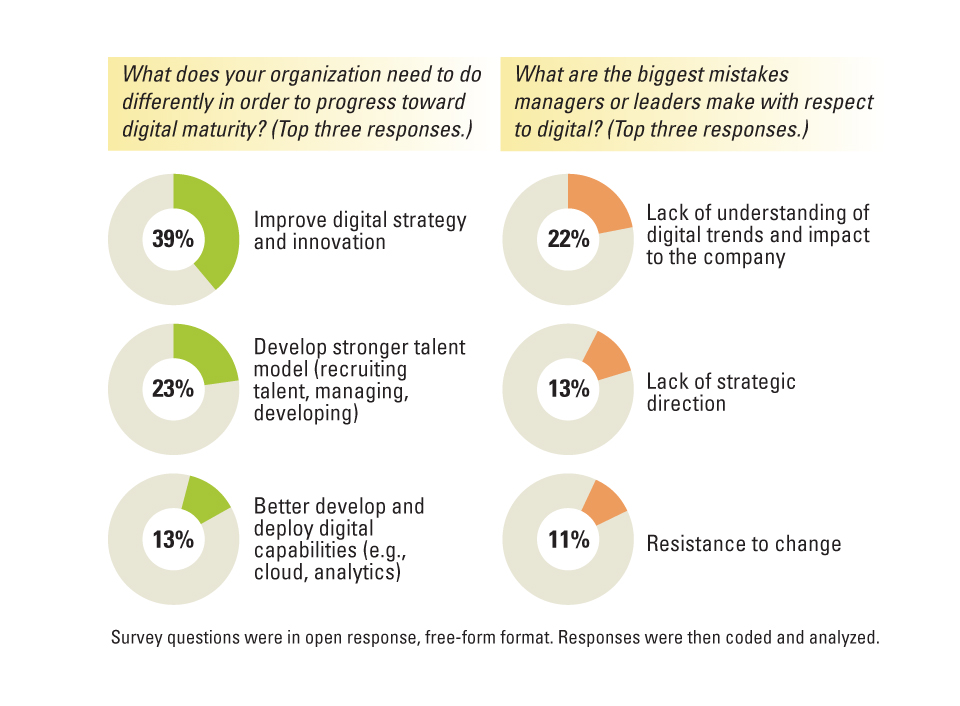 Achieving Digital Maturity