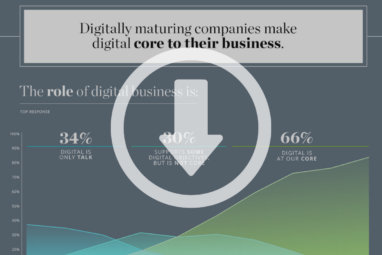 Infographic: What Enables Digital Maturity?