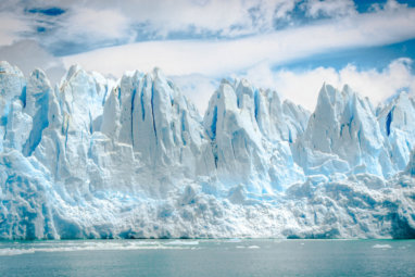 COVID-19, Climate Change, and the Forces Shaping Our Future